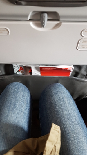 seat pitch... - knees aren't touching...This airline has better seat pitch than AC Rouge...my knees aren't touching the seat infront of me. That's a BONUS!!