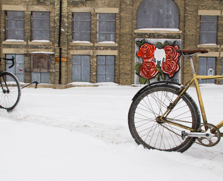 wintercycle10.jpg