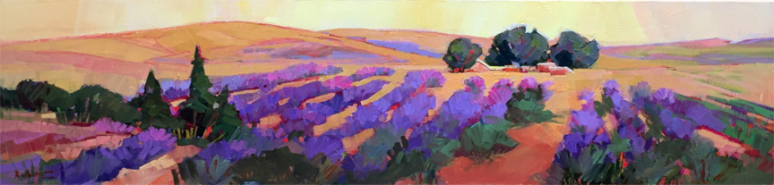 Lavender Rows and Rows