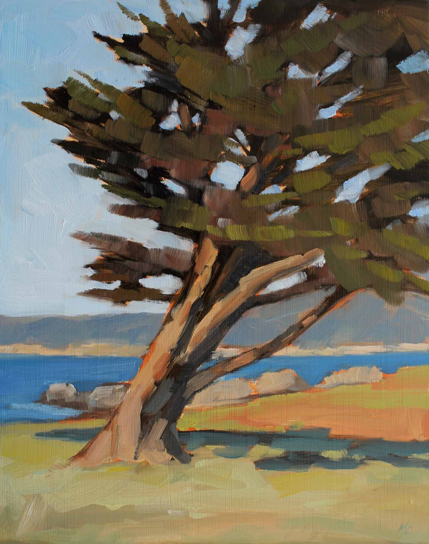 Leaning Cypress, Pacific Grove