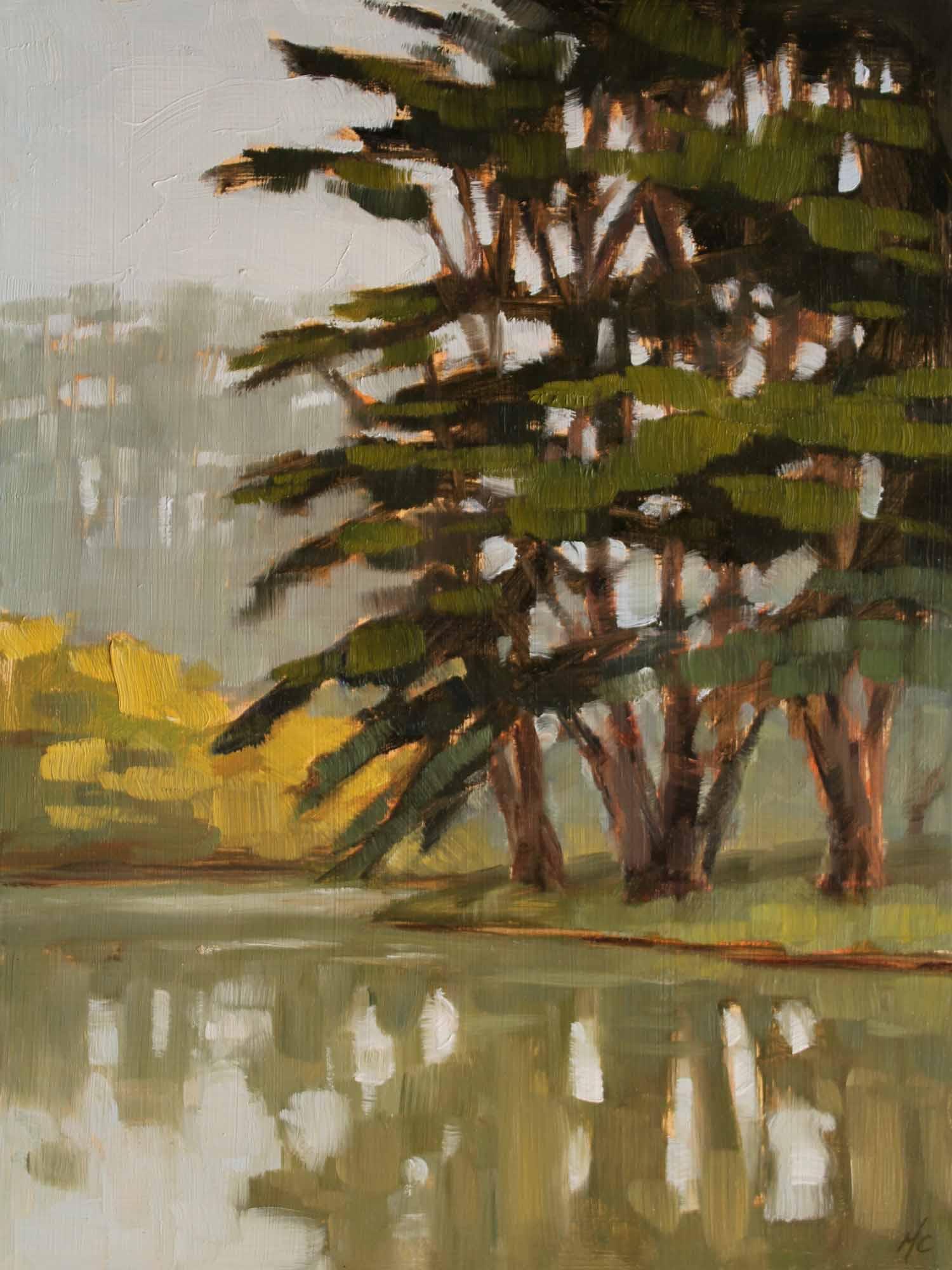Cypress Reflections, Stow Lake