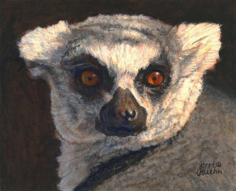 Lemur Looker