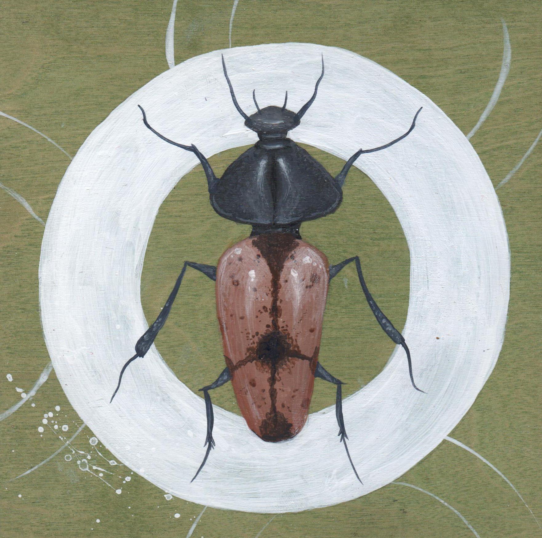 Beetle #2
