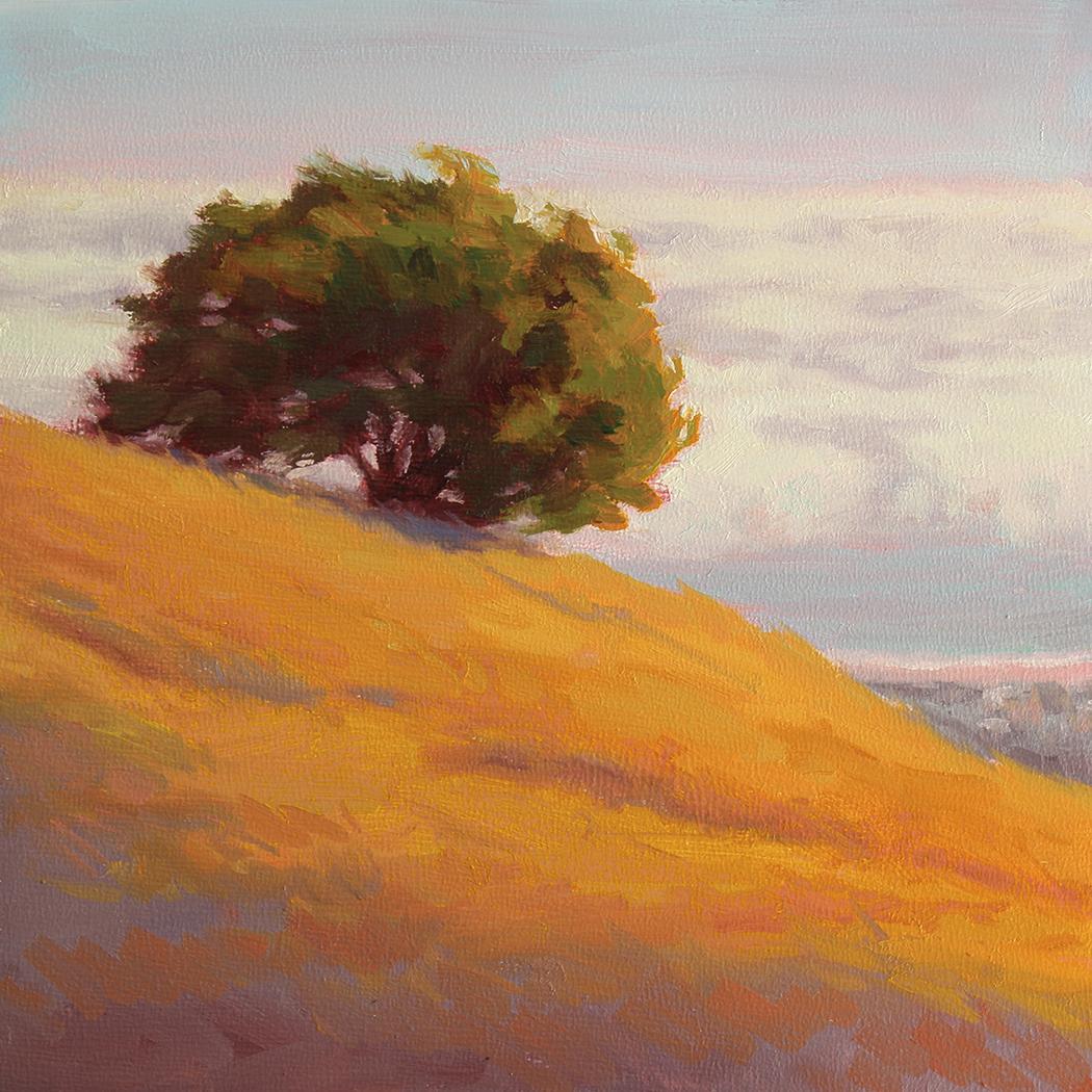 Oak over Stinson