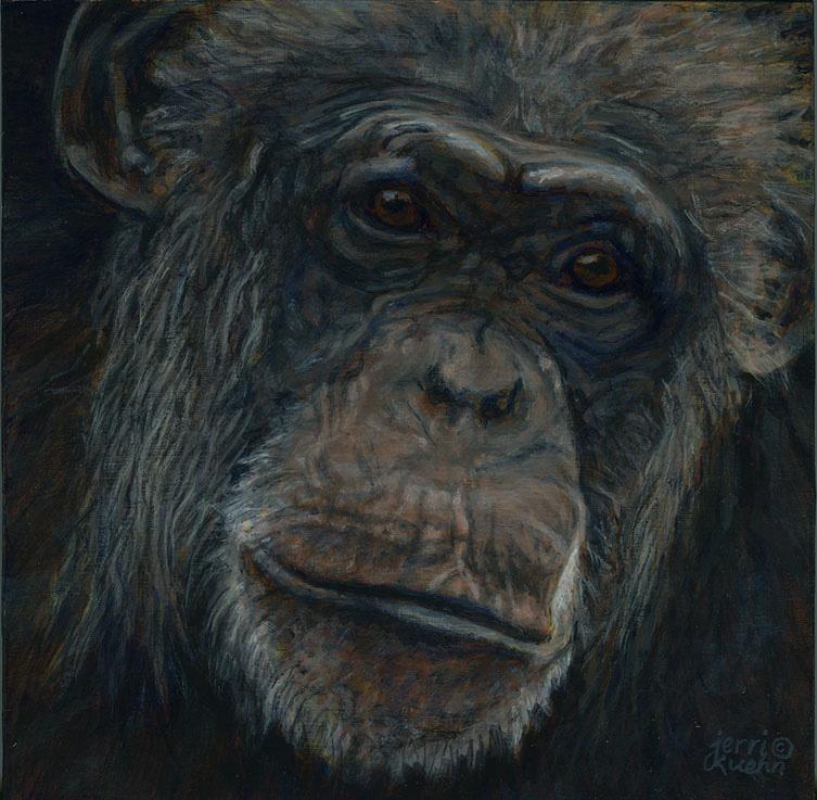 Chimpanzee Awareness