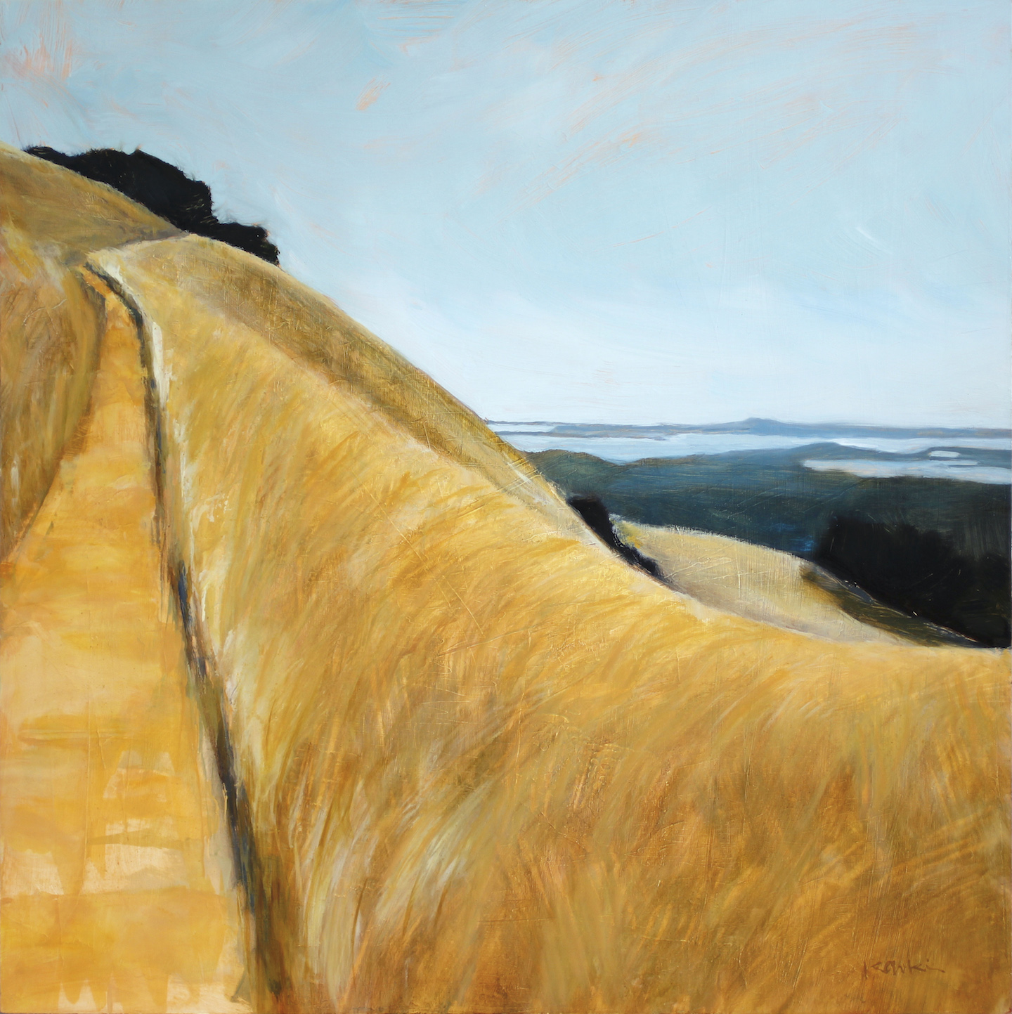 Golden Grass on Mt. Tam