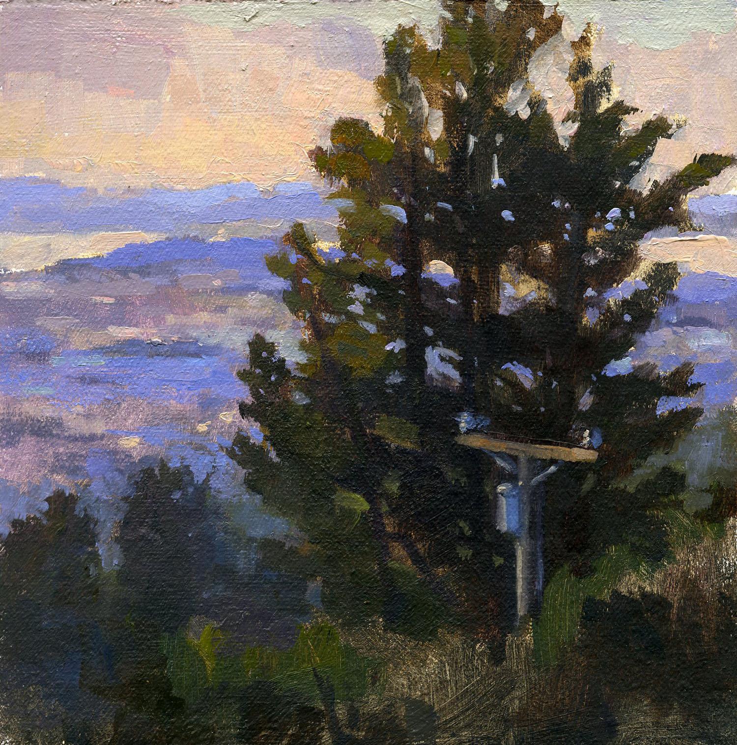 Berkeley Hills, Looking North