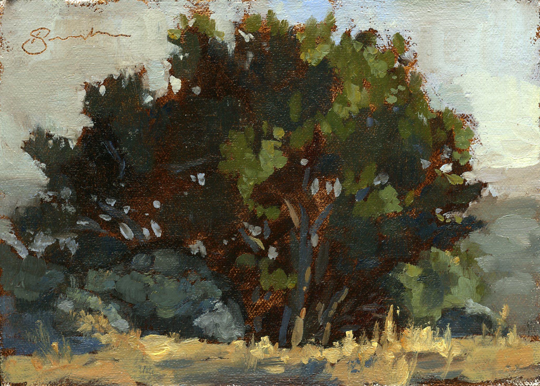 Oak Sketch