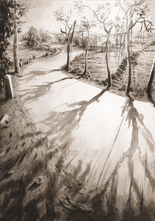 Pai S-Road Shadows
