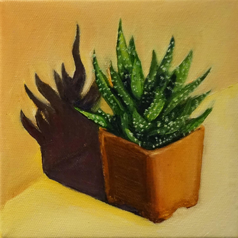Mini Succulent 1