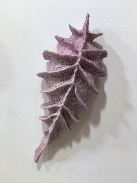 Purple Diatom