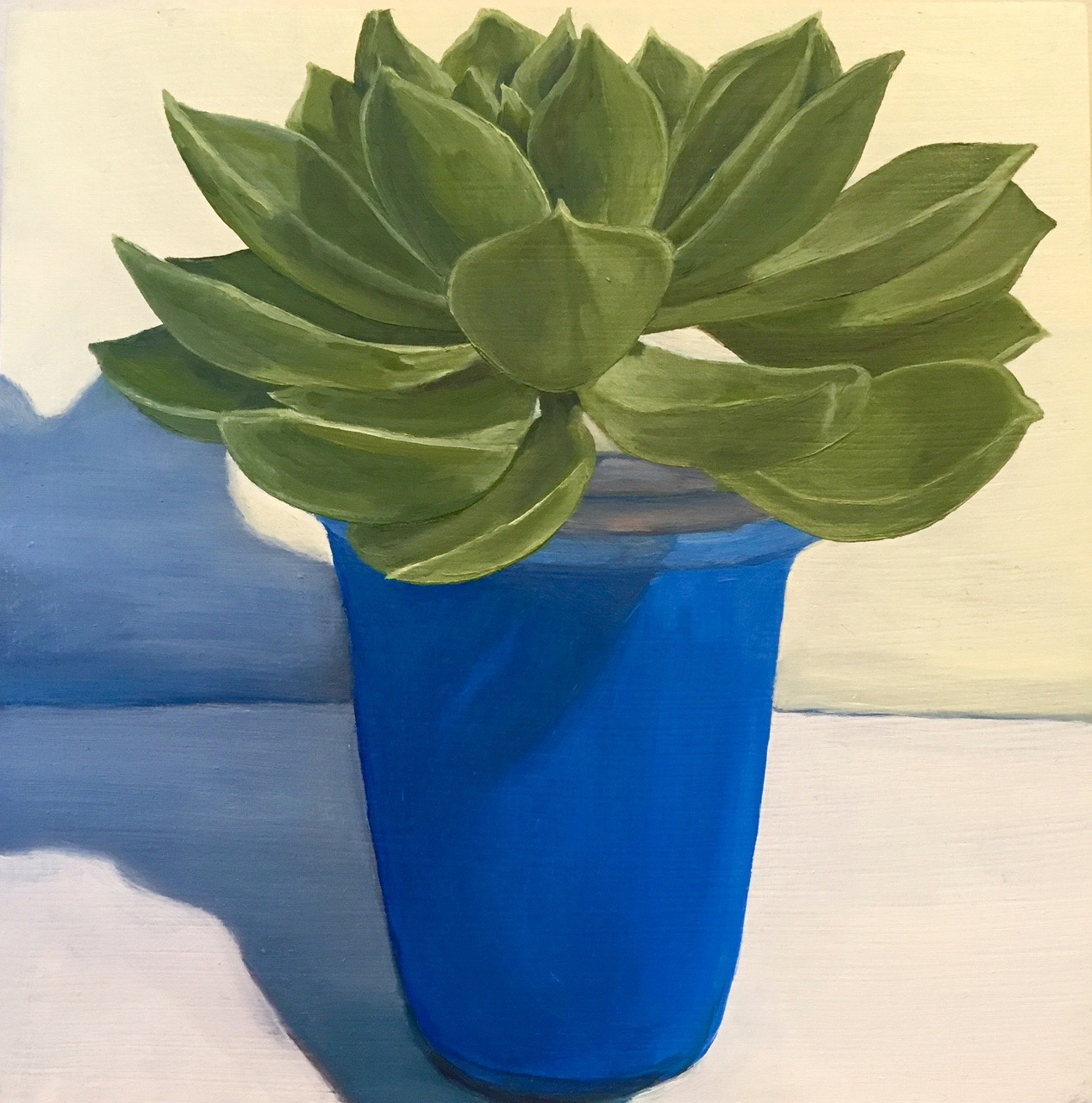 Potted in Blue