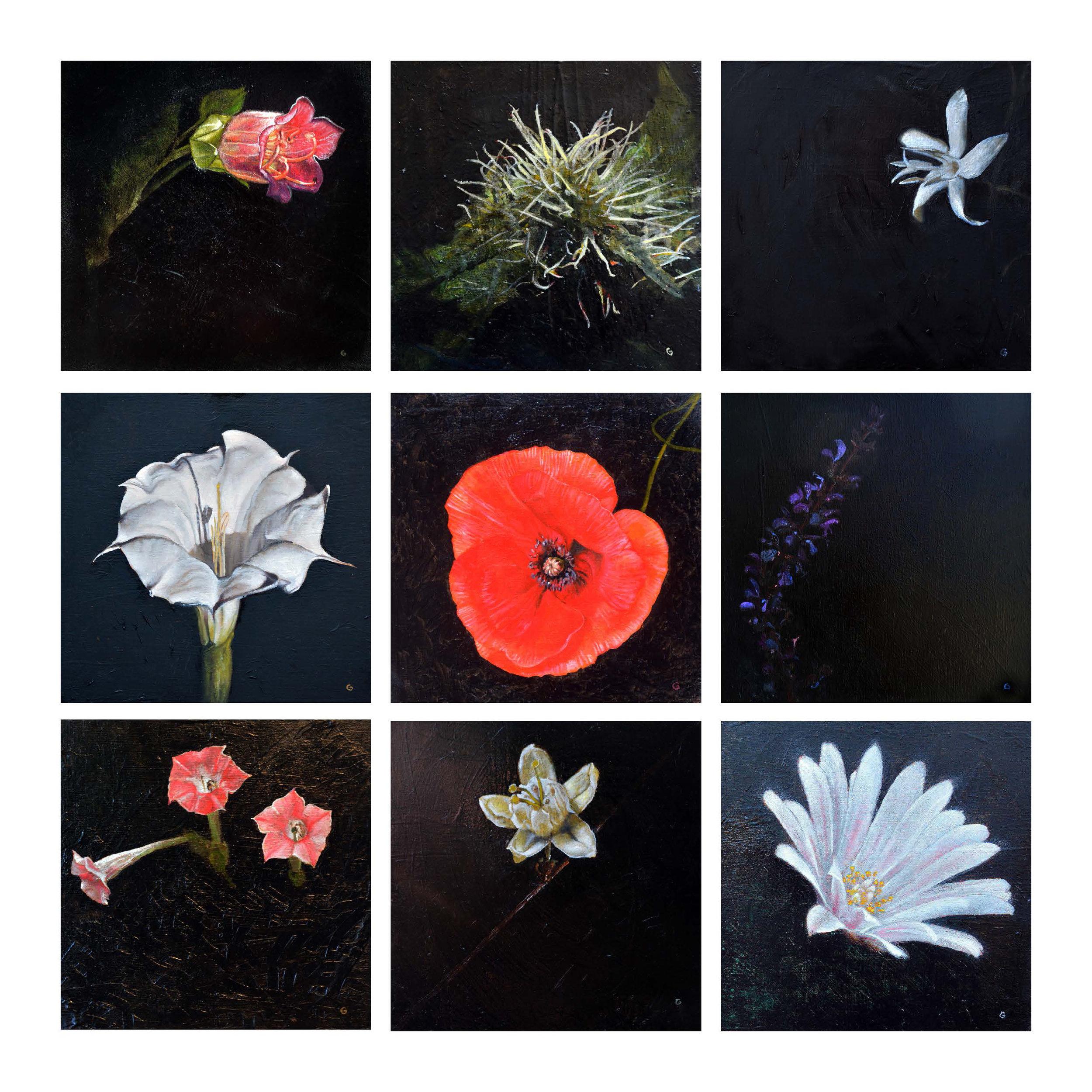 Psychoactive Flowers
