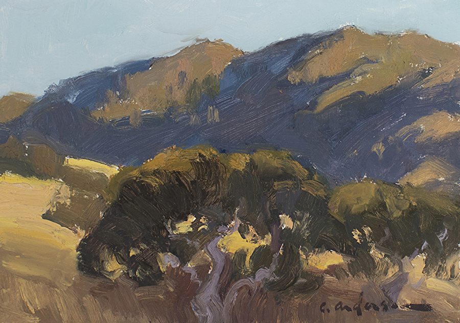 Mount Diablo Shadows