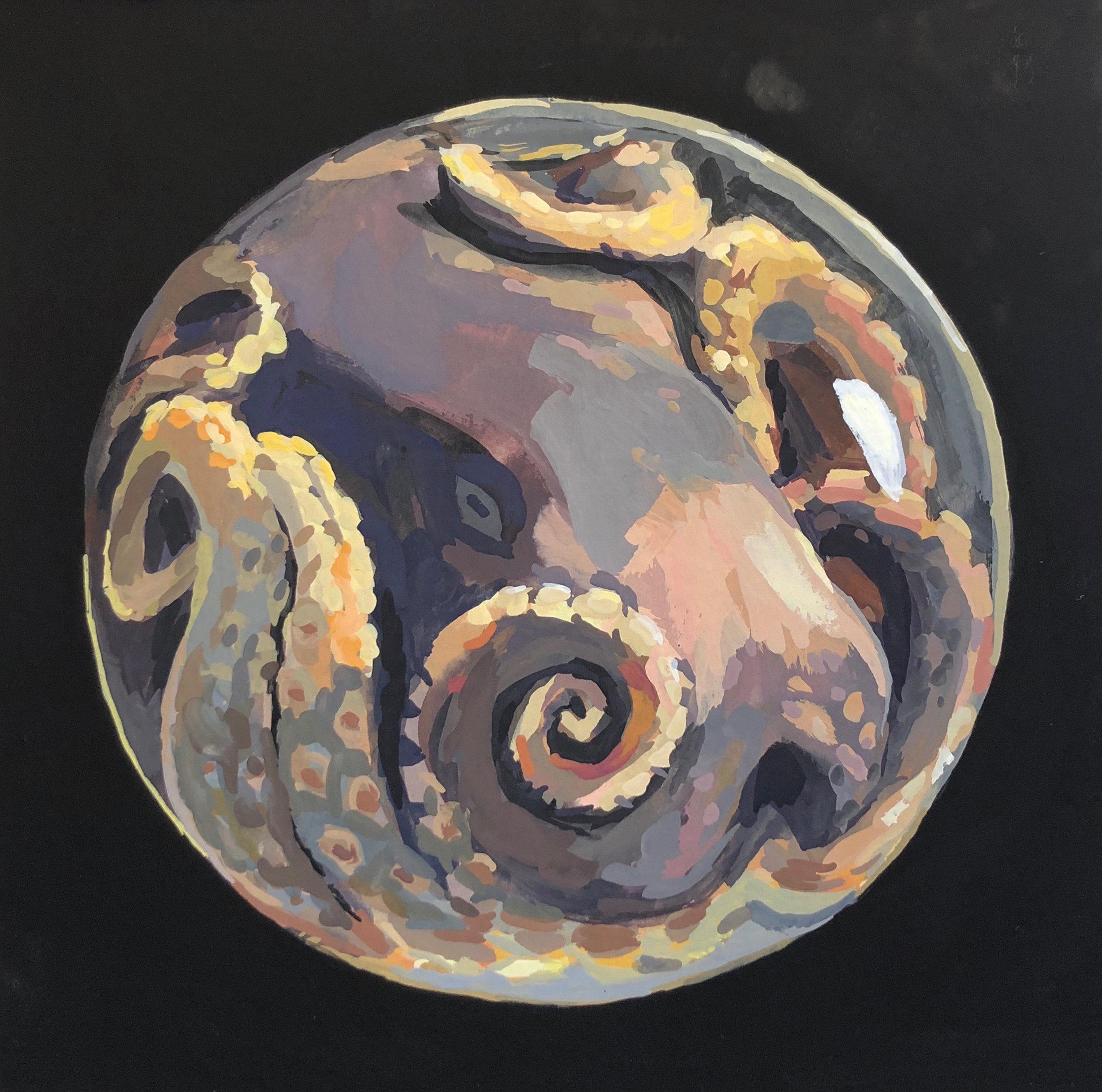 Octopus Orb