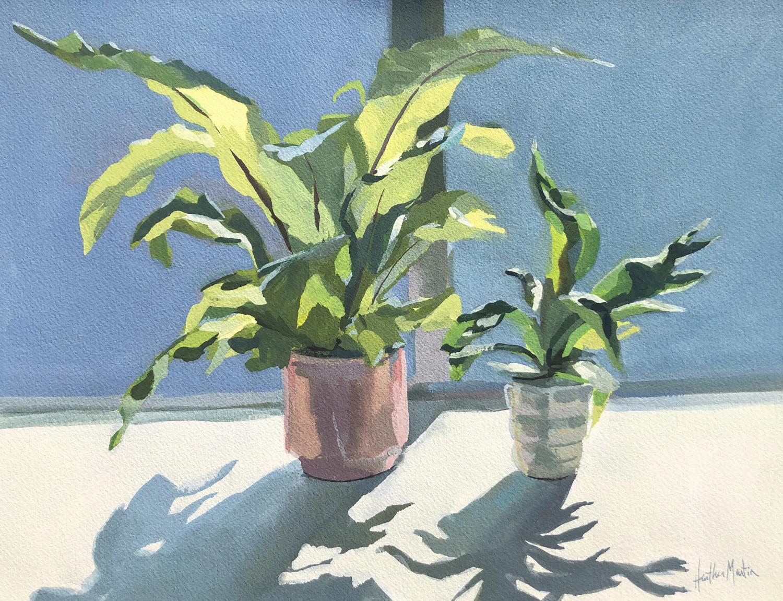Tale of Two Ferns