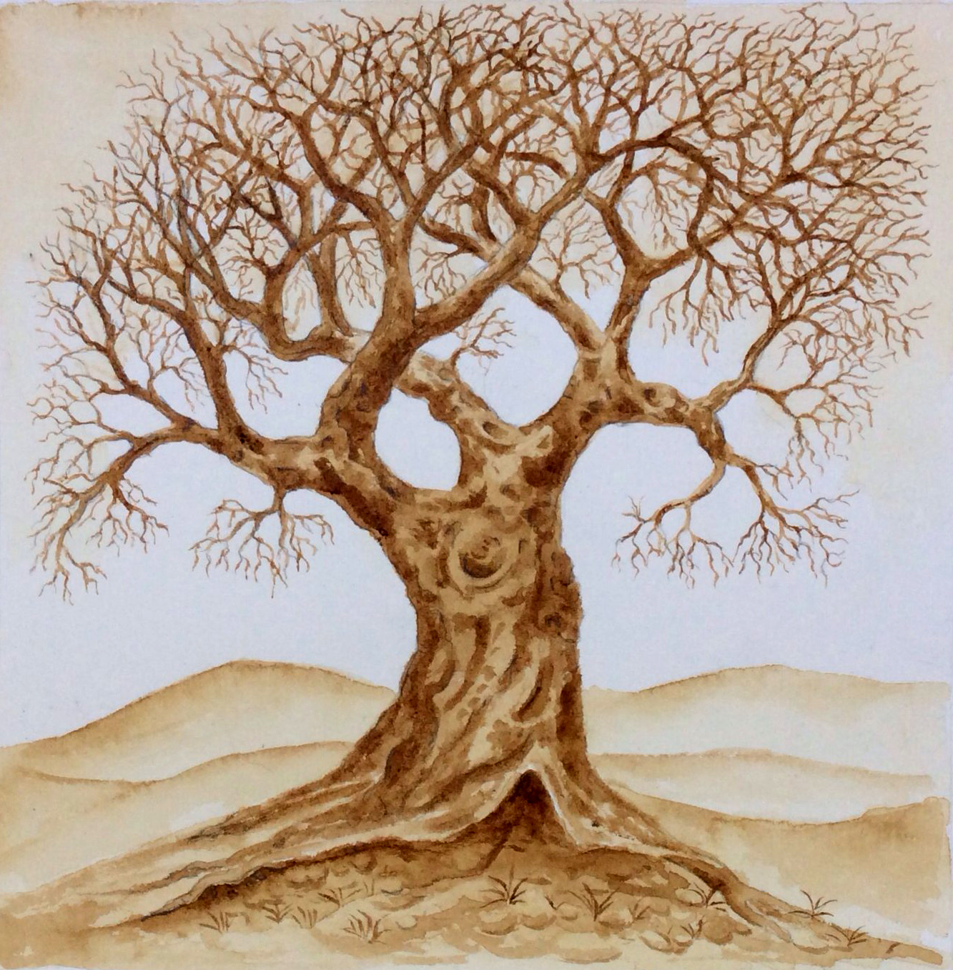 Coffee painting of an oak tree in the winter