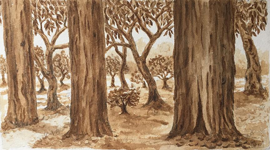 Fantasy Redwood Forest