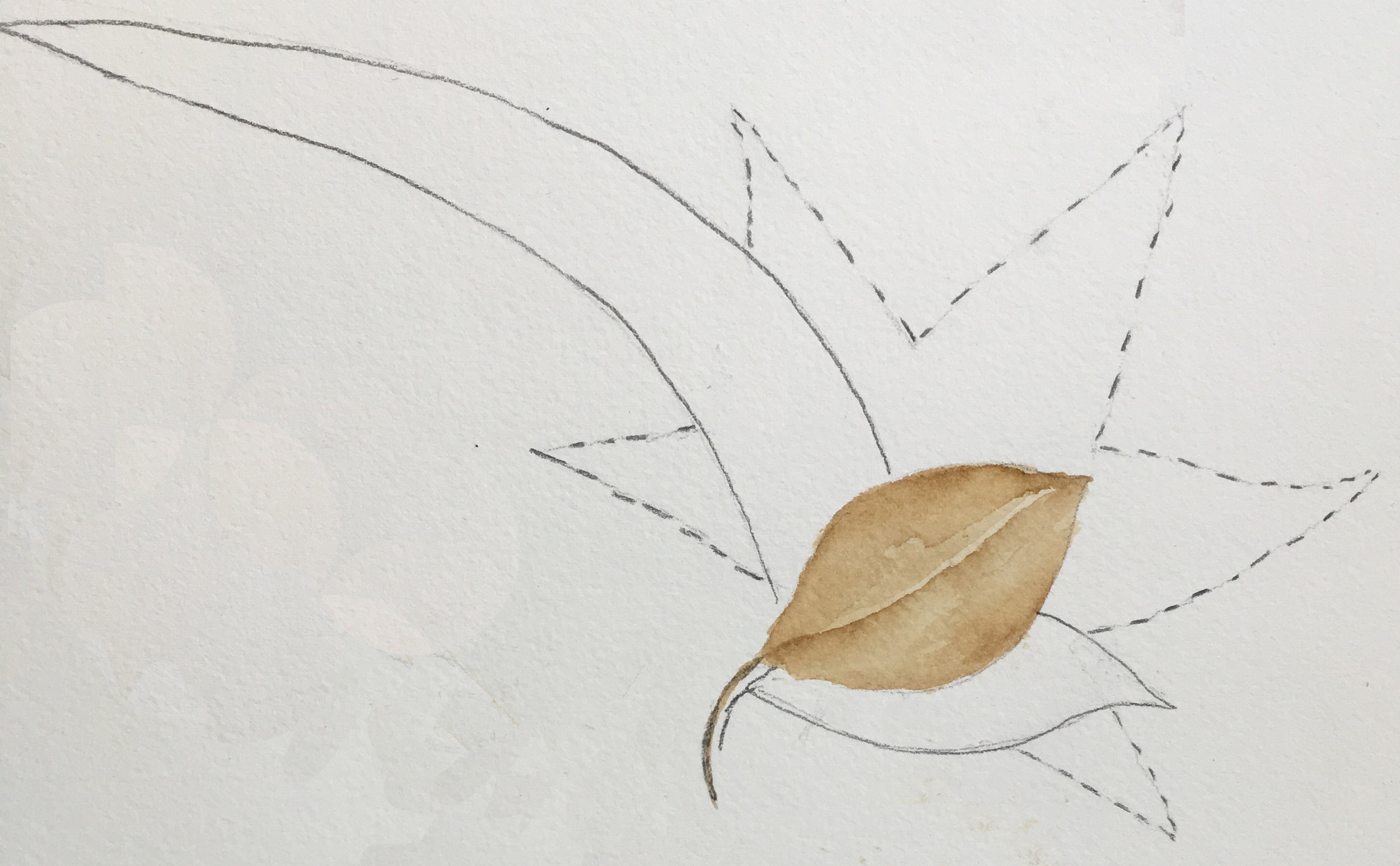 Develop composition by moving between each leaf adding more detail until the final result is achieved.