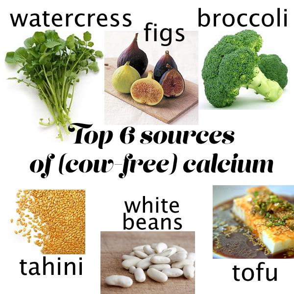 calcium rich foods non dairy.jpg
