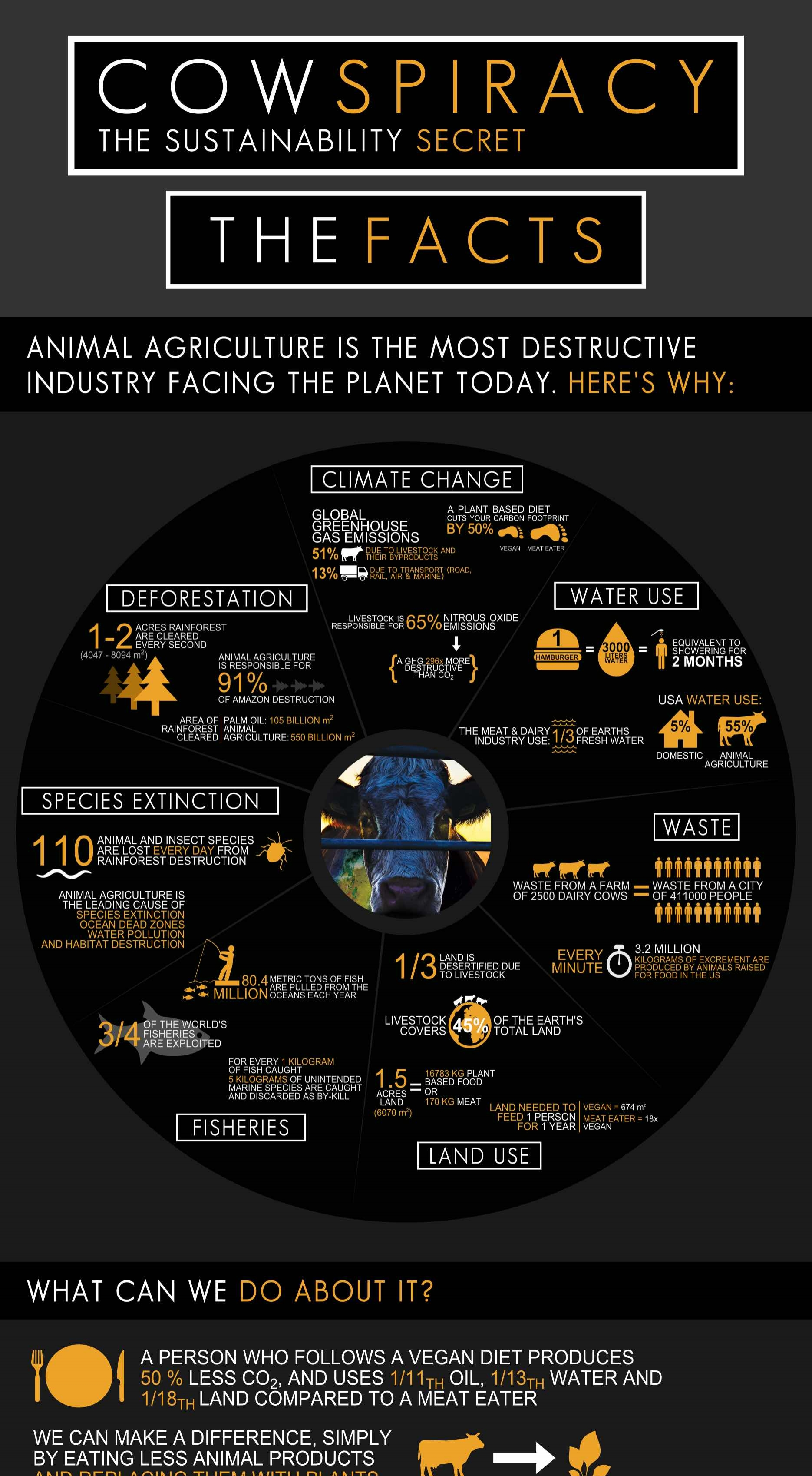cowspiracy-facts-sustainability-infographic.jpg