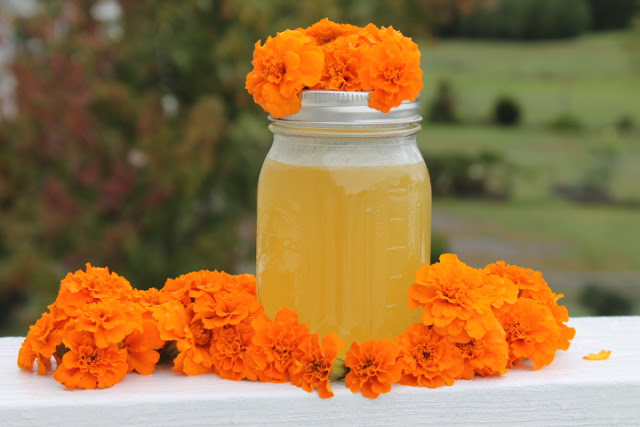 Marigold Jelly - something to make as a gift or for yourself