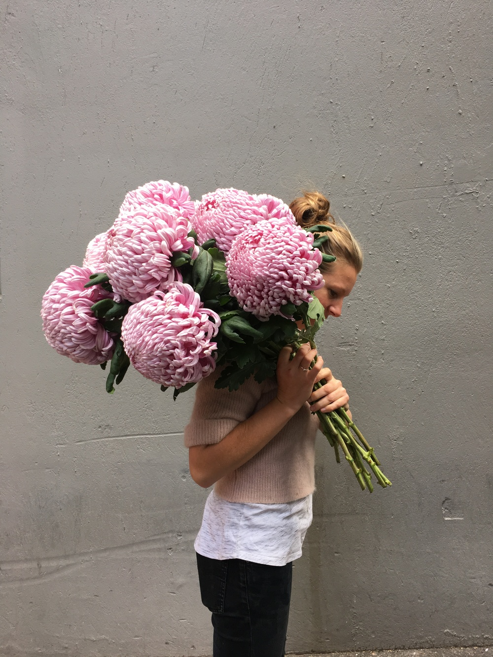 giant chrysanthemums.jpeg