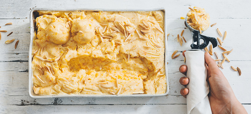 APRICOT & tofu ICECREAM - Made without coconut milk