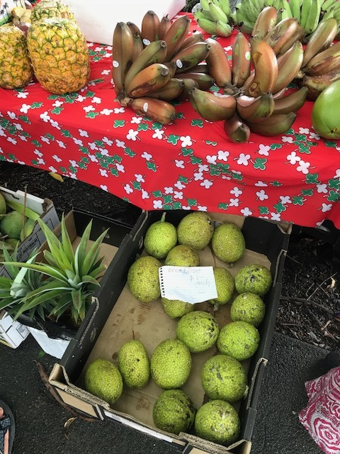 Fresh breadfruit at Mossman Farmer's Market in Far North Queensland.