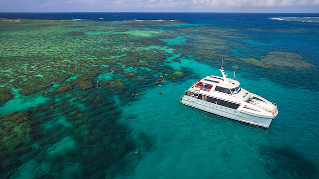 Best vegan and vegetarian friendly eco snorkelling cruises on the Great Barrier Reef