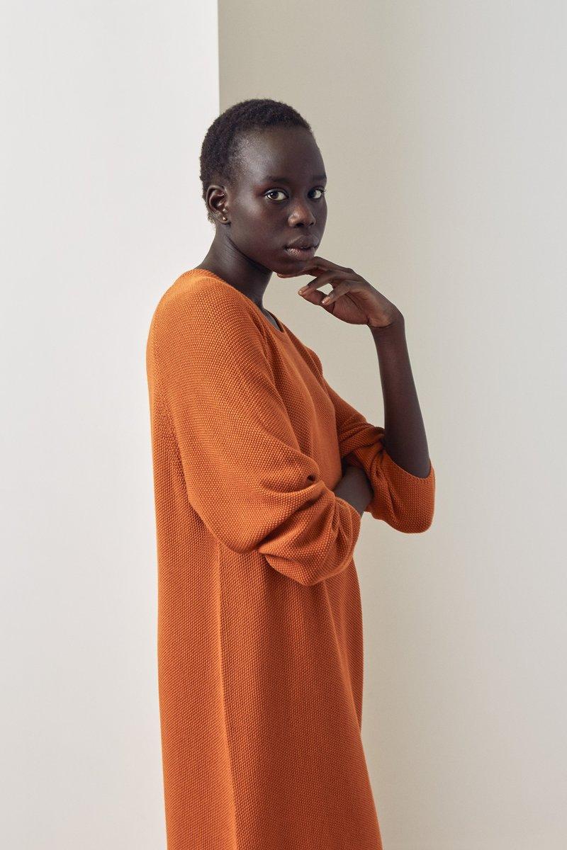 jumper_dress-rust-lookbook-6434_800x1200.jpg