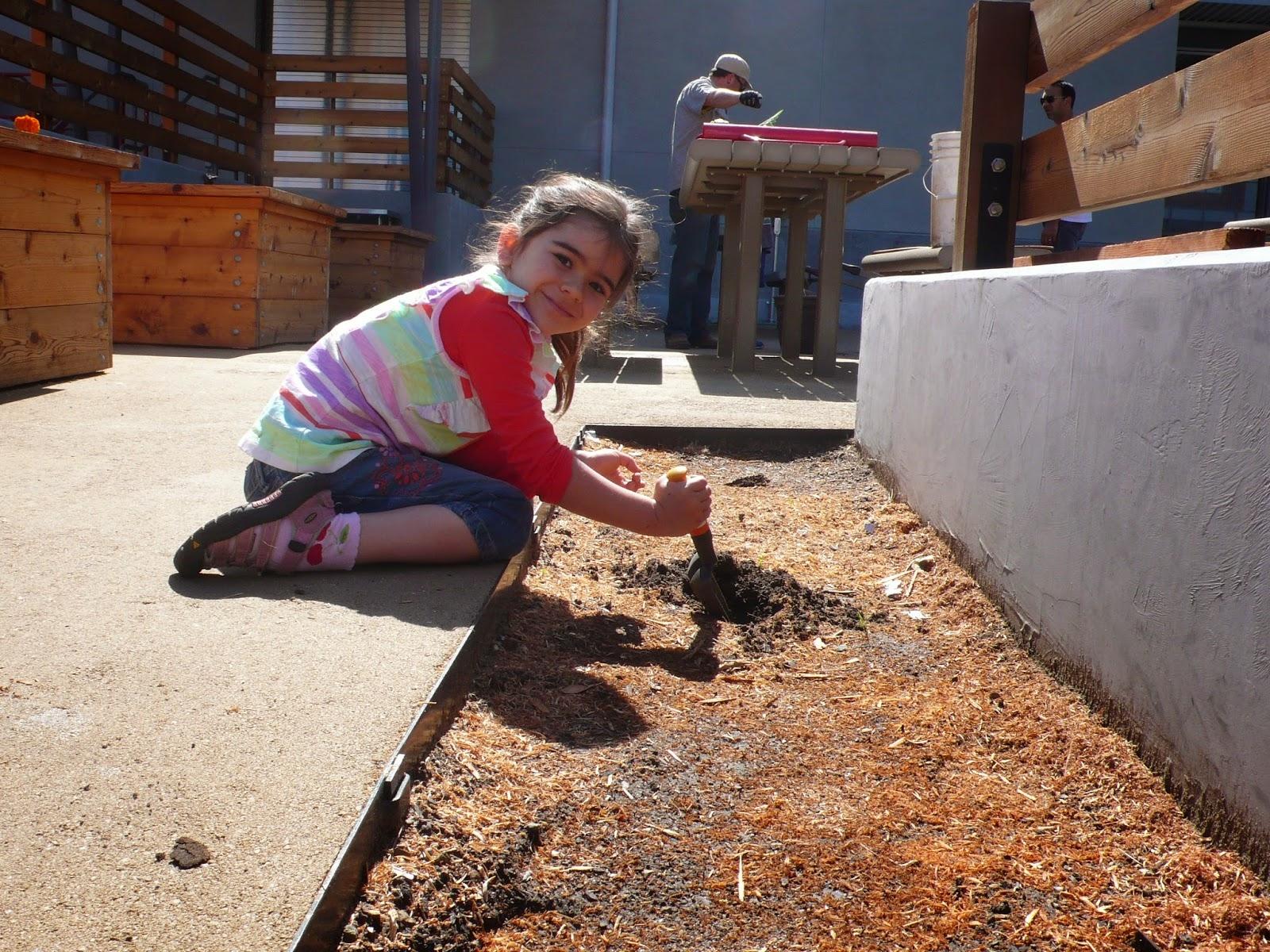 Montclair Elementary School student working in the garden.