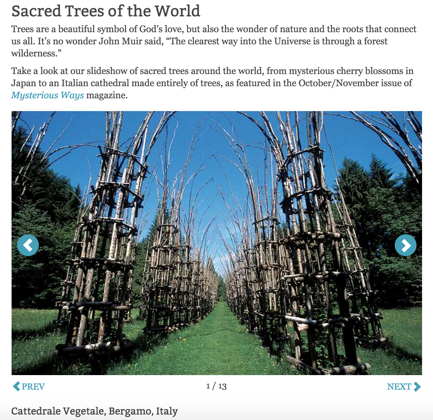 Sacred Trees of the World