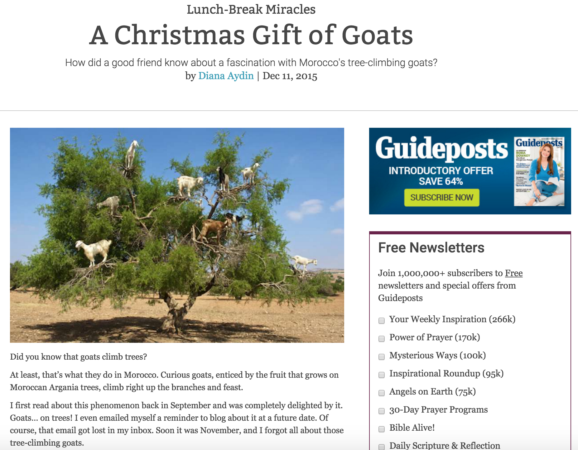 A Christmas Gift of Goats