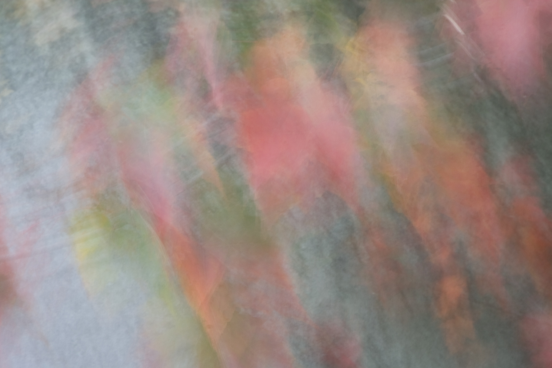 EKO_20071008_0987.jpg