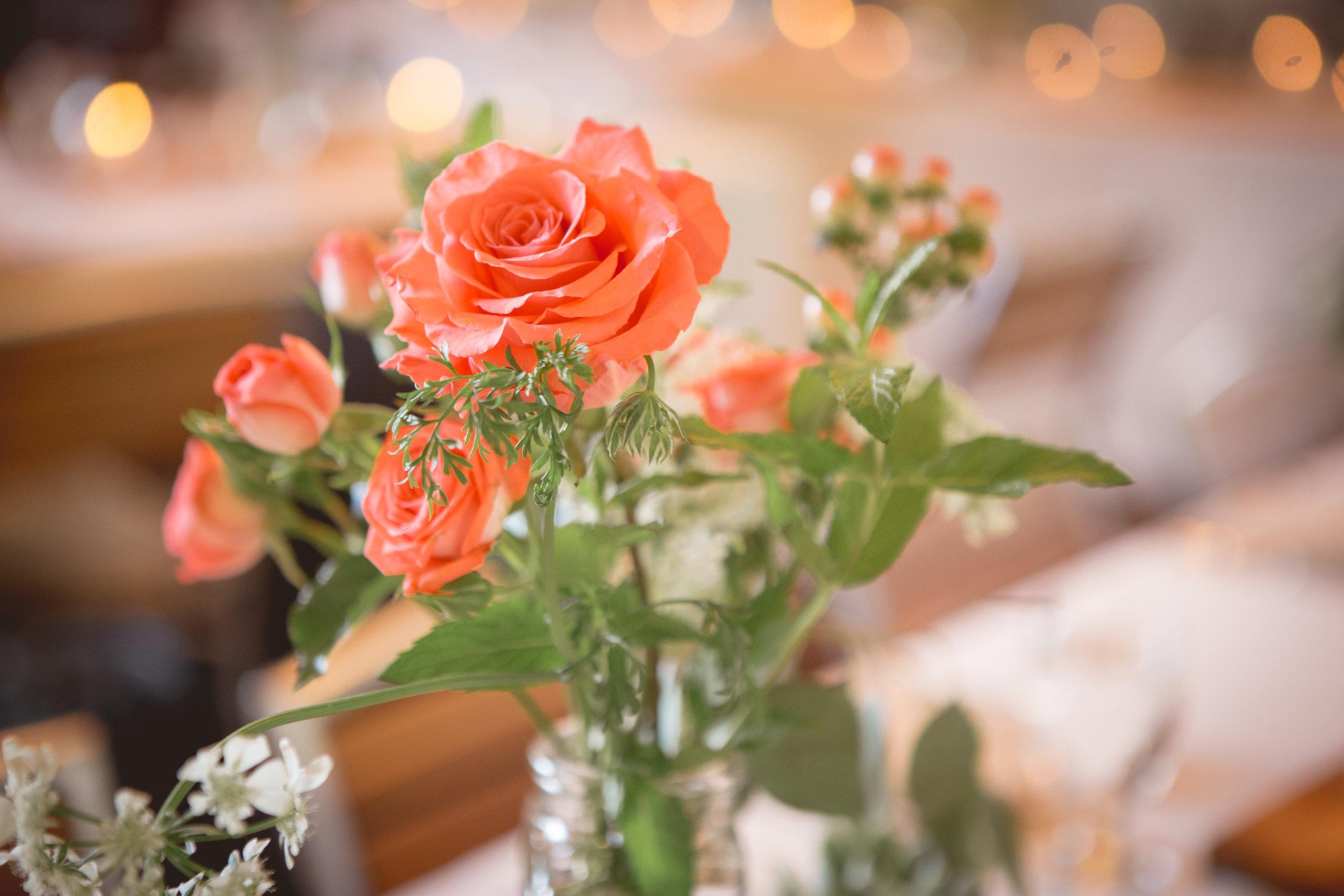 Krista-Max-Wedding523.JPG