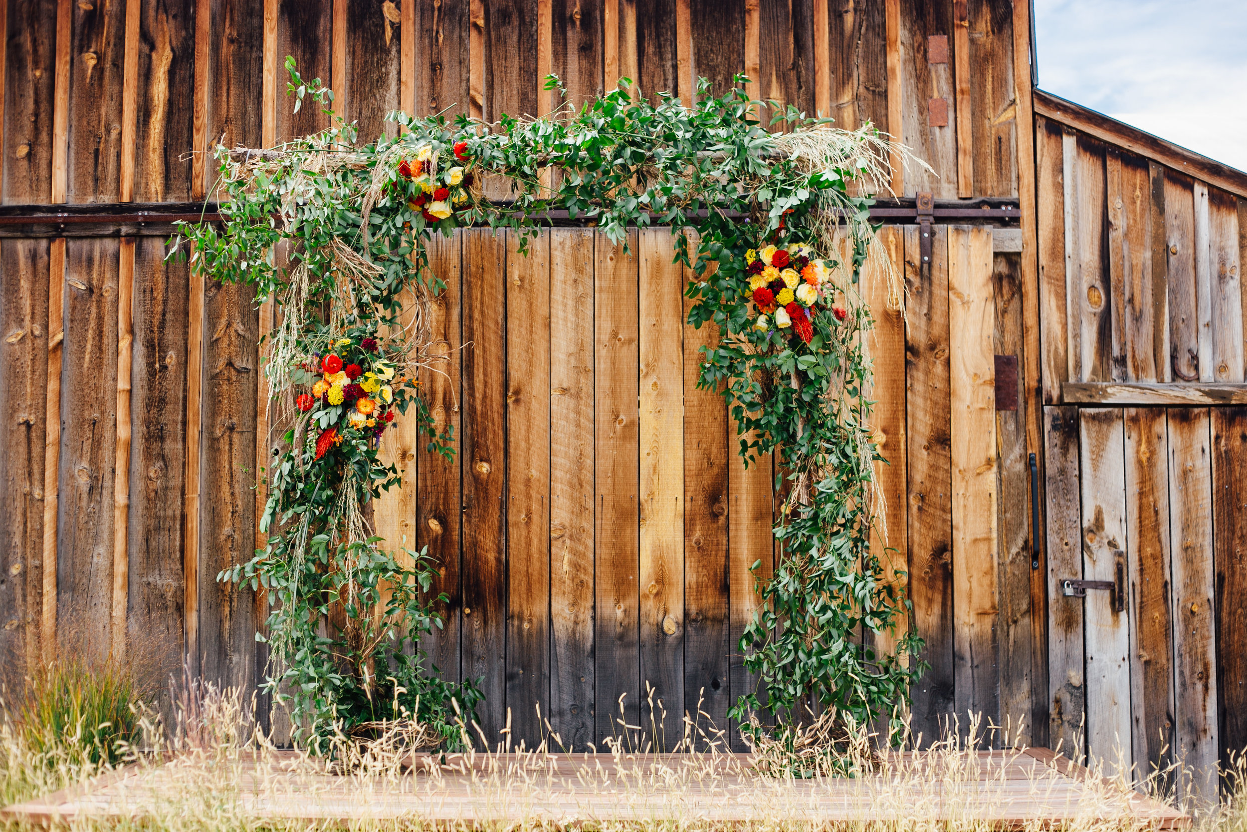 Wedding Ceremony Archway Against Wooden Barn Little Thompson Valley Pioneer Museum Berthoud Colorado Wedding