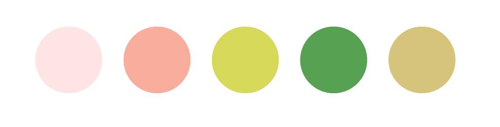 Colour Palette -
