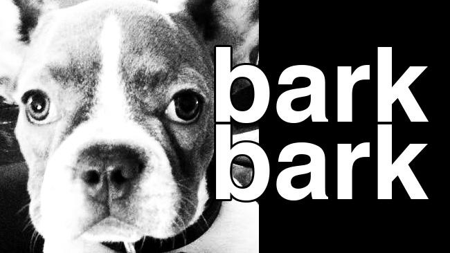 barkbark_noodletownusa.jpg