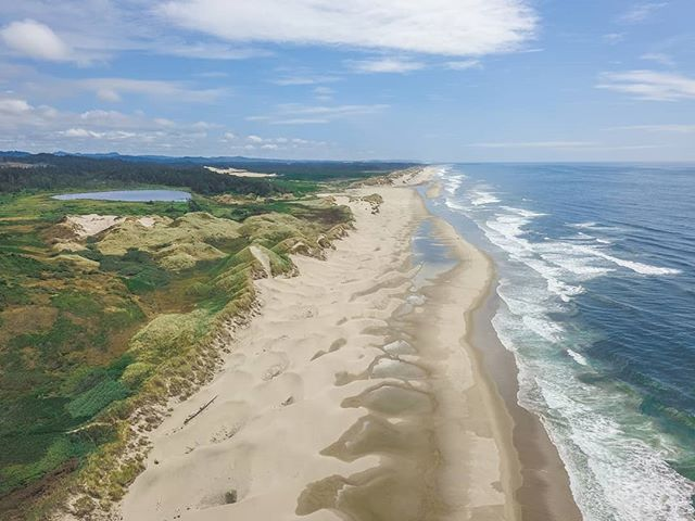 Places like this are wild and give me hope for a better tomorrow. The beaches and oceans are constantly calling my name lately and who am I to not answer? . . . #DJI #Mavic #MavicPro #Aerial #Aerialphotography #florence #oregon #PNW #thegreatpnw #upperleftusa #beaches #dunes #wildernessculture #adventureculture #adventurethatislife  #huckberry #artofvisual #sand