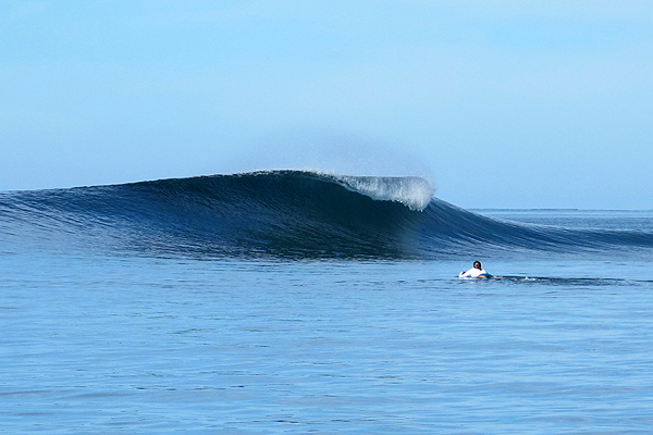 WAIDROKA BAY SURF & DIVE - - MORE INFO -
