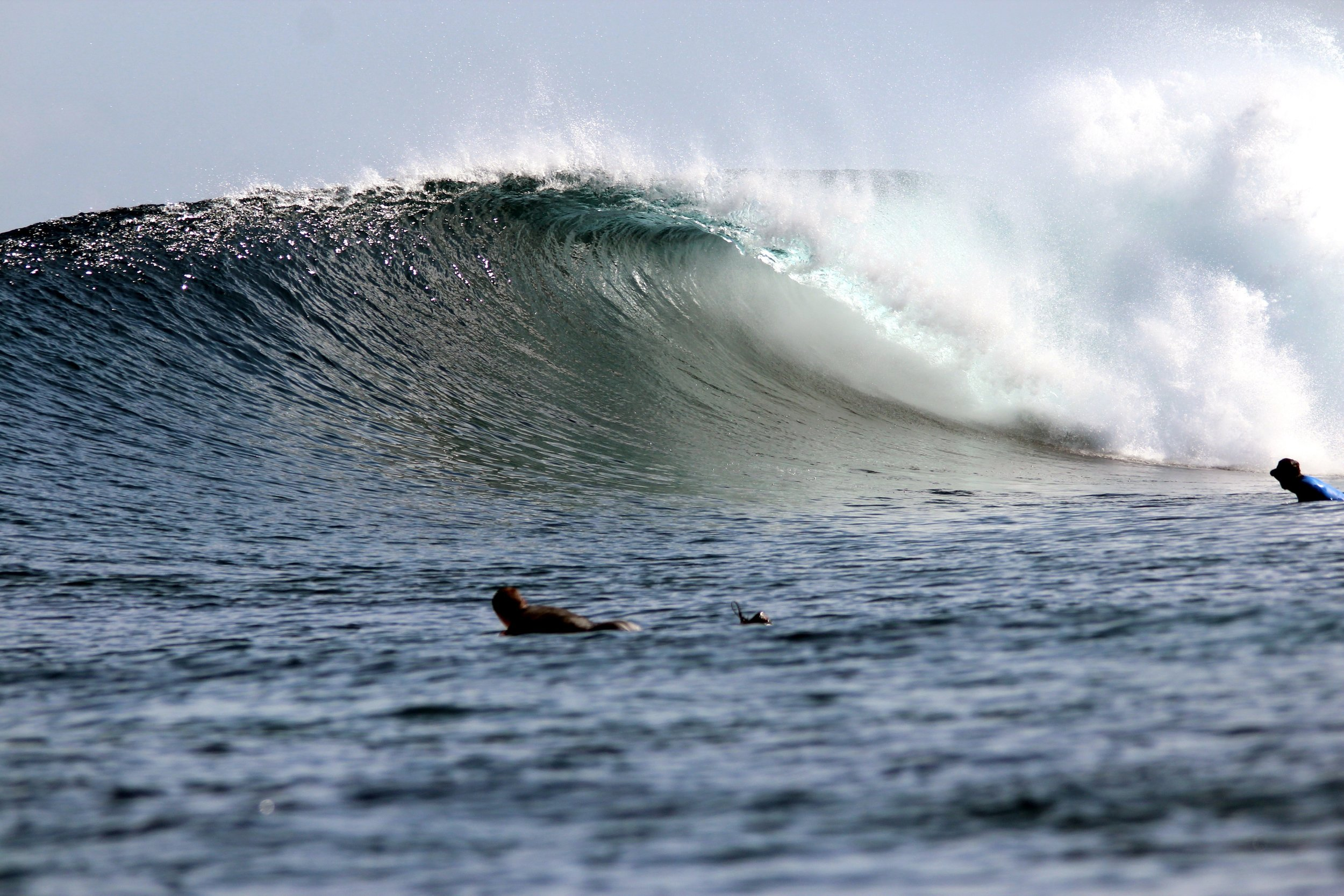 Surf uncrowded waves with a few others