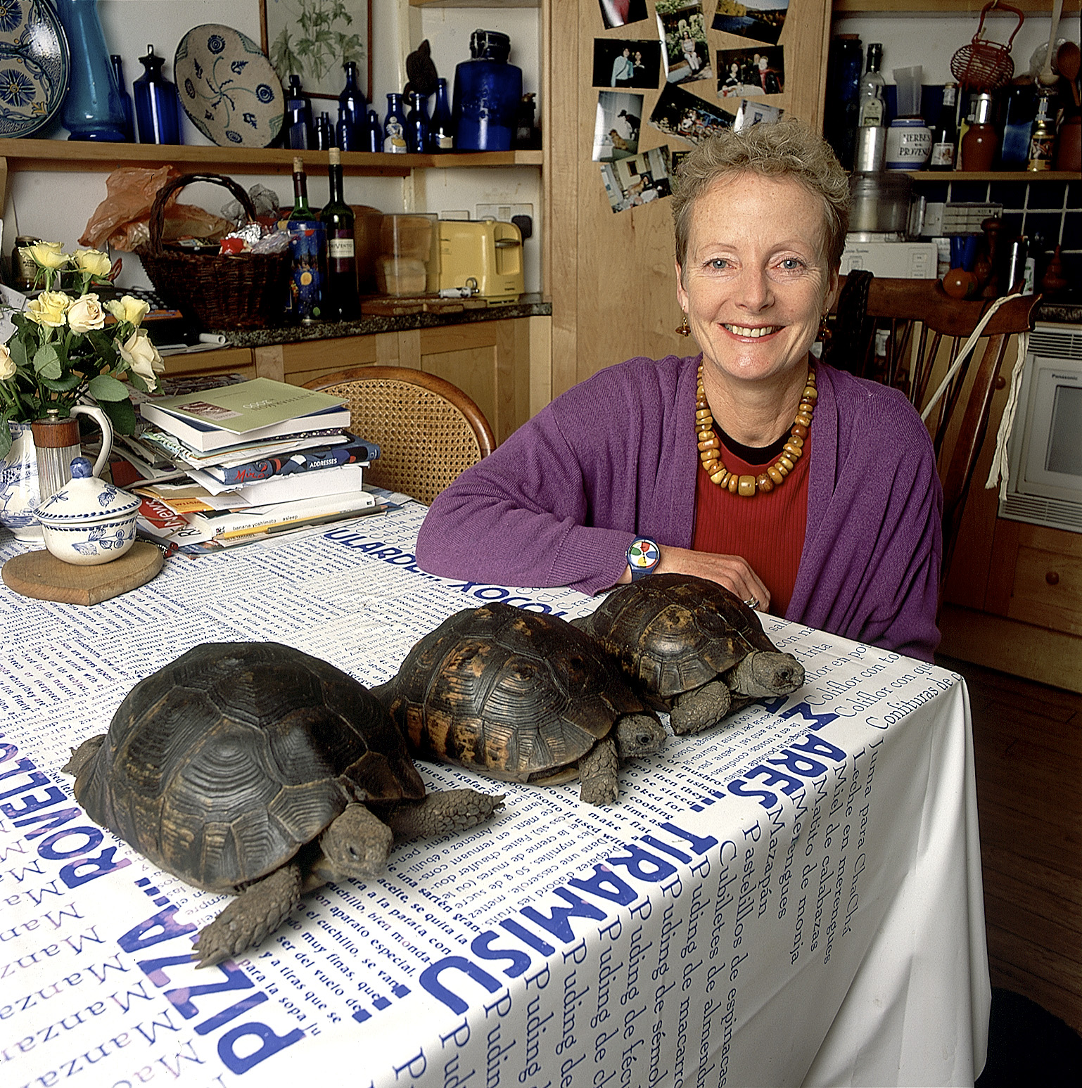 Tortoise Collector, Portrait by Anthony