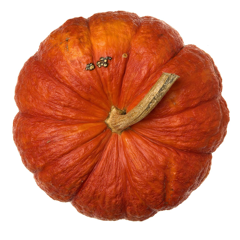 Gourd.0093.jpg