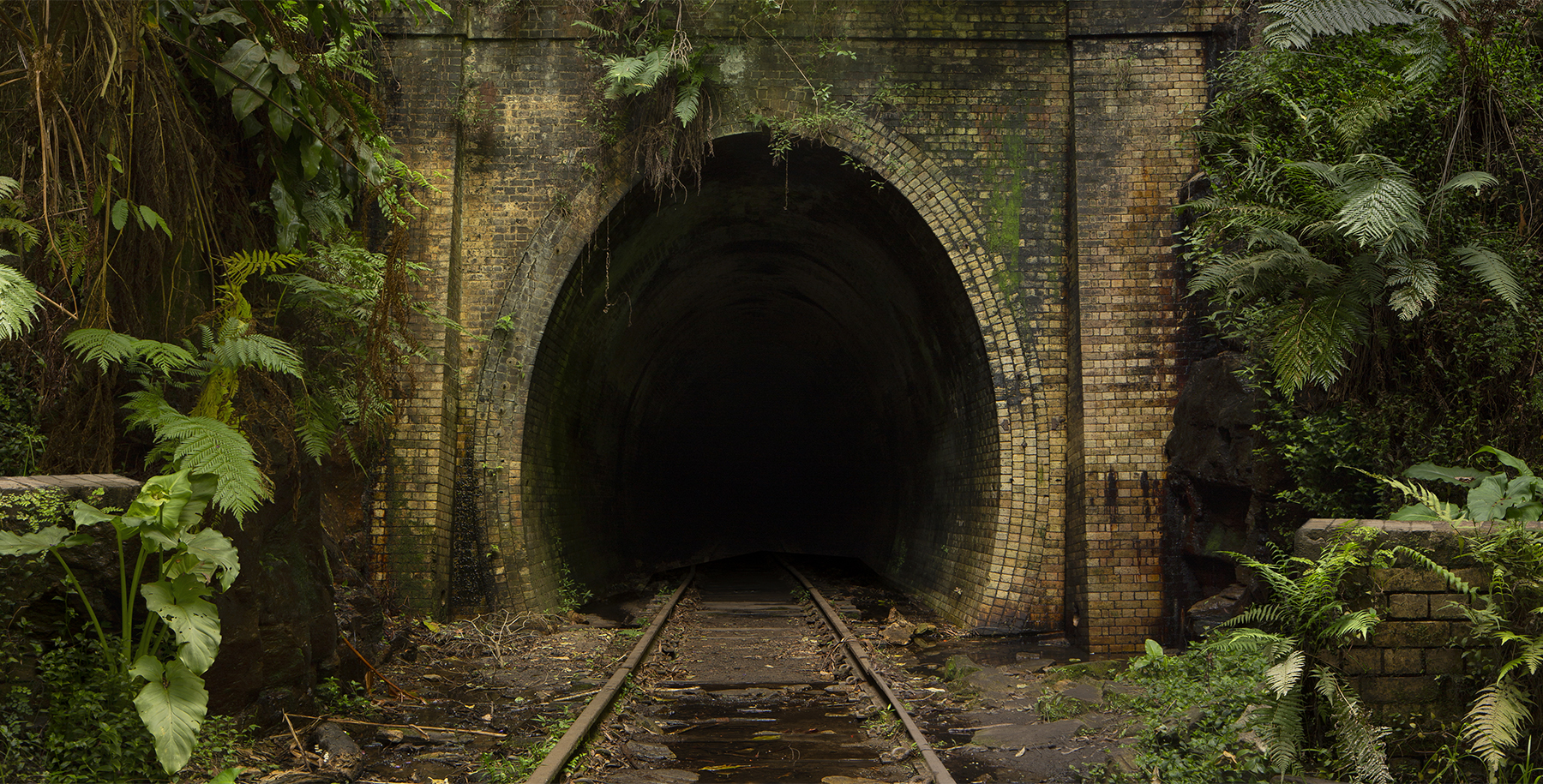 tunnel for Insta 3.jpg