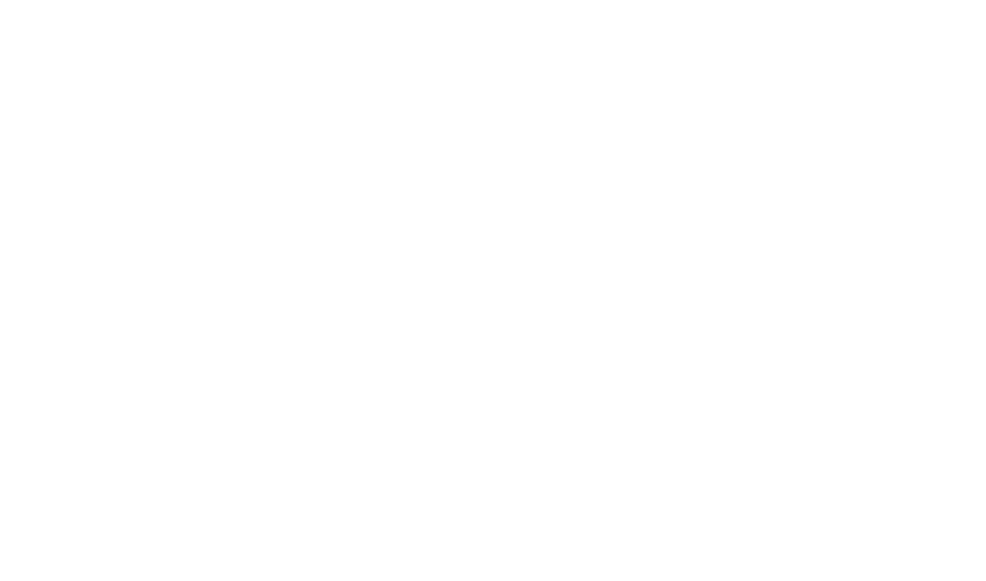 LopoLopo-logo-2white.png