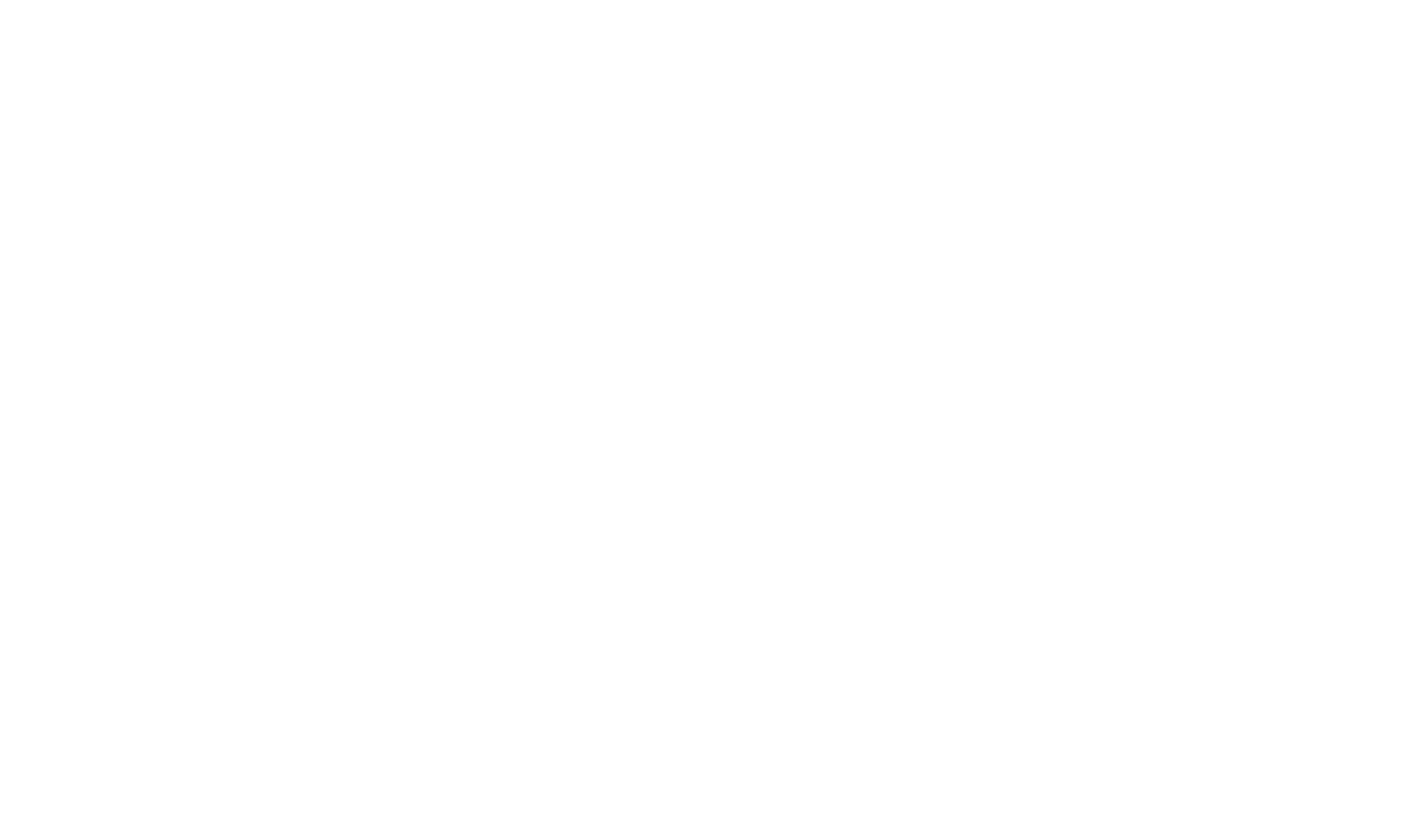 LopoLopo-logo-pinecone-white.png