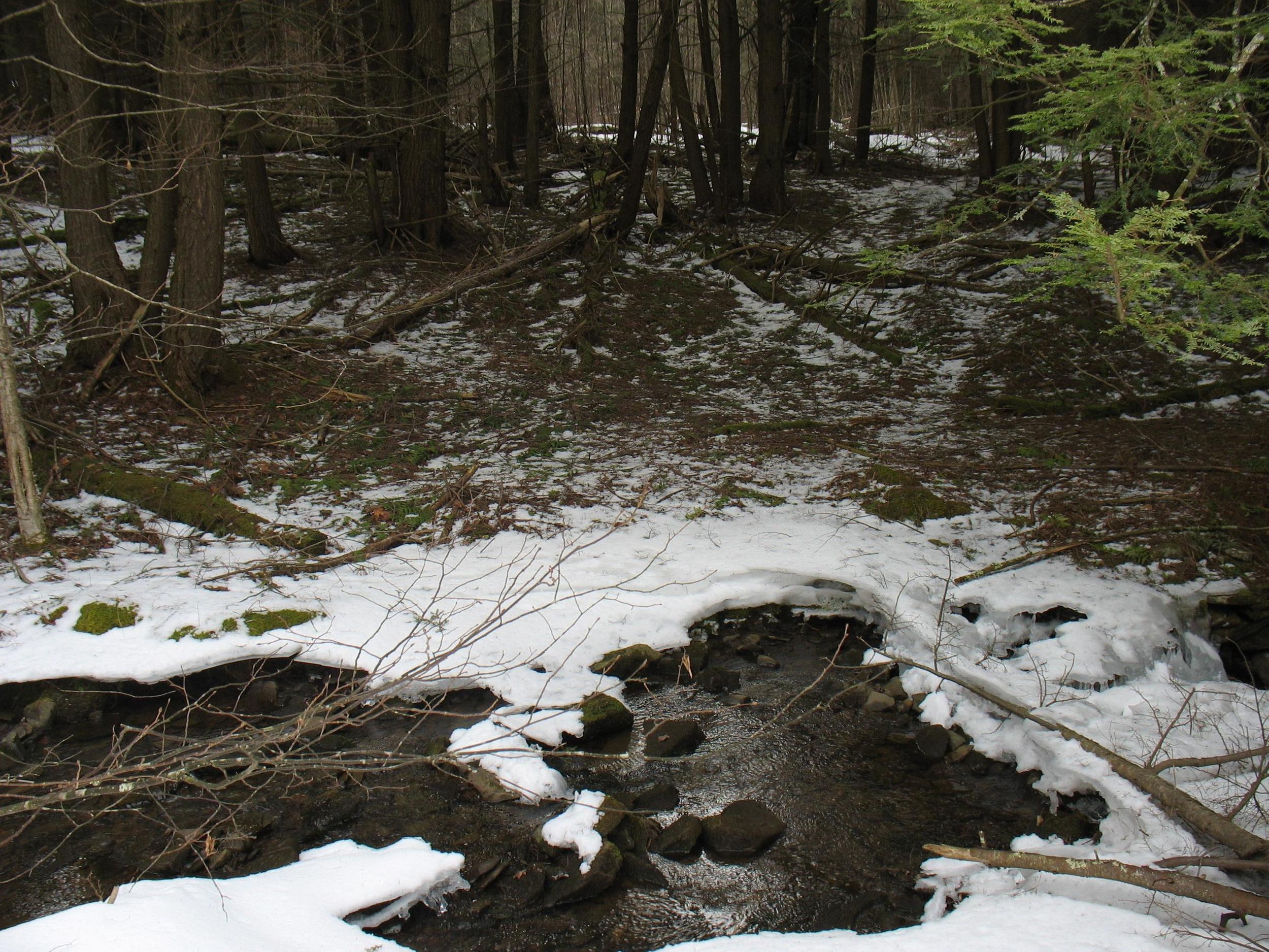 brook_late_winter.jpg