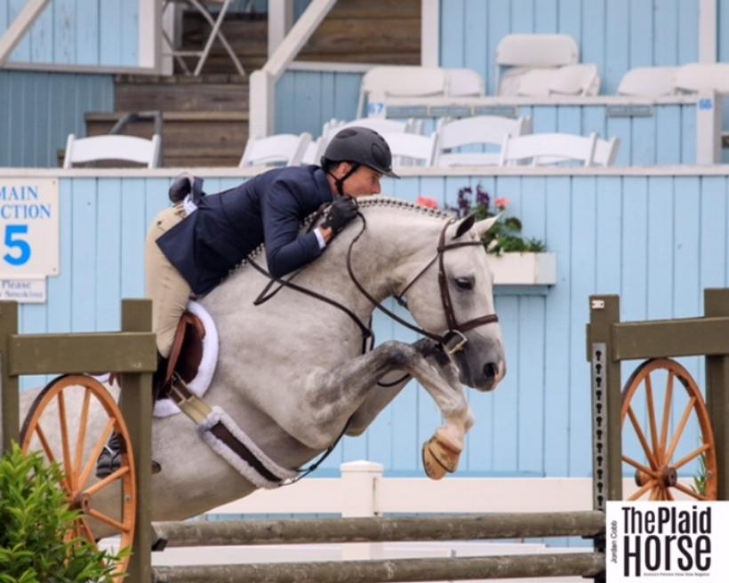 Devon Horse Show, 2017