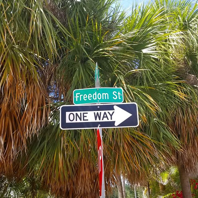 Be you do you love you.  #freedom • • • #freedomstreet #thisway #anyway #love #joy #boundless #beyoudoyouloveyou #passion #peace #onwardandupwards #life #create #you #heart #soul #art #survival #instagay #strong #bodymind #health #travels #world #earth #conscious #nature #humancondition